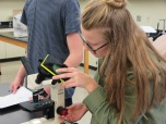 Novagrade Smartphone adapter för mikroskop